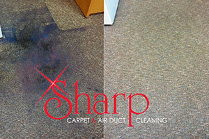 Carpet Cleaners Omaha  Carpet Cleaning
