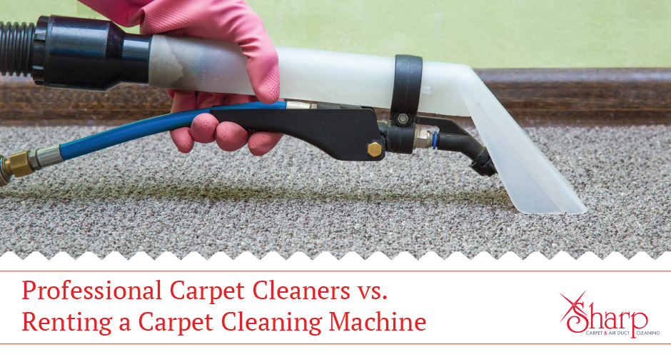 Should You Hire a Professional Carpet Cleaner or Rent a Carpet Cleaning Machine?